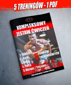 Maciej Pietkiewicz Kompleksowy trening w domu Pobierz PDF